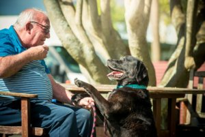 Pets are more than welcome at Brightwater Home